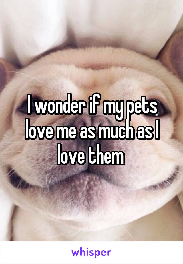 I wonder if my pets love me as much as I love them