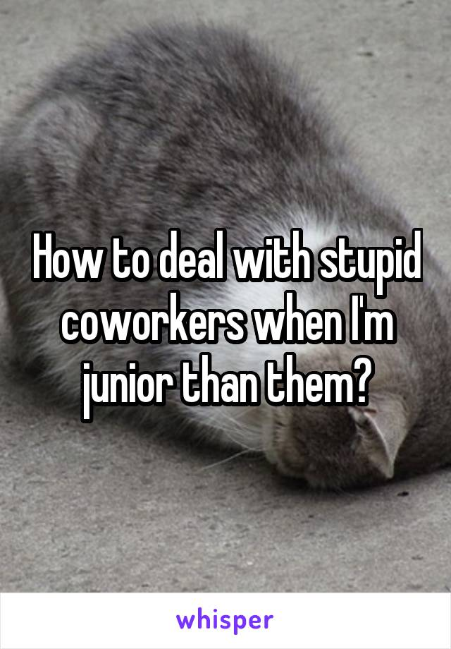 How to deal with stupid coworkers when I'm junior than them?