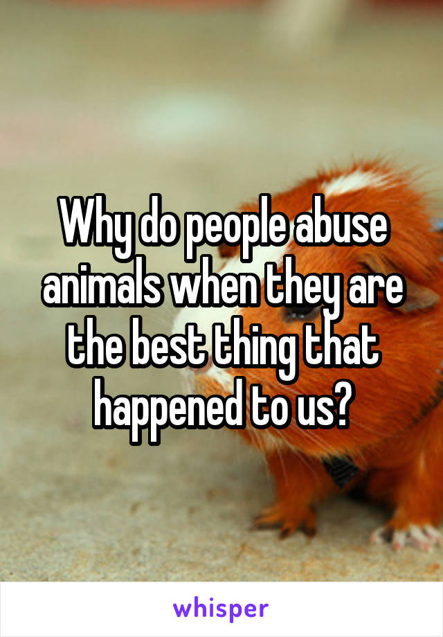 Why do people abuse animals when they are the best thing that happened to us?