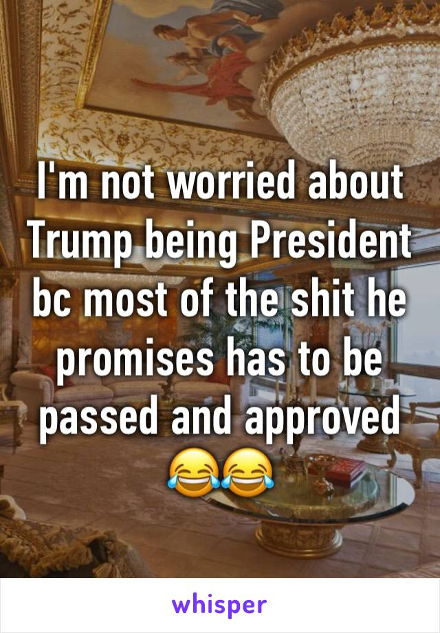 I'm not worried about Trump being President bc most of the shit he promises has to be passed and approved 😂😂