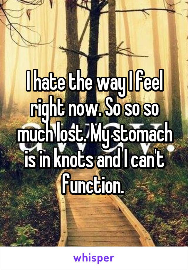 I hate the way I feel right now. So so so much lost. My stomach is in knots and I can't function.