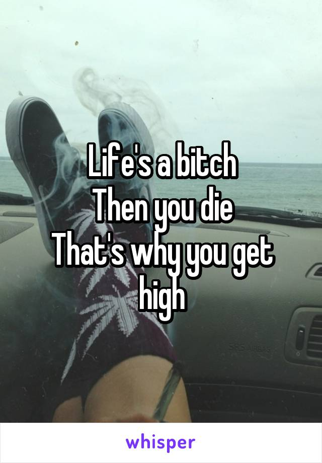 Life's a bitch Then you die That's why you get high