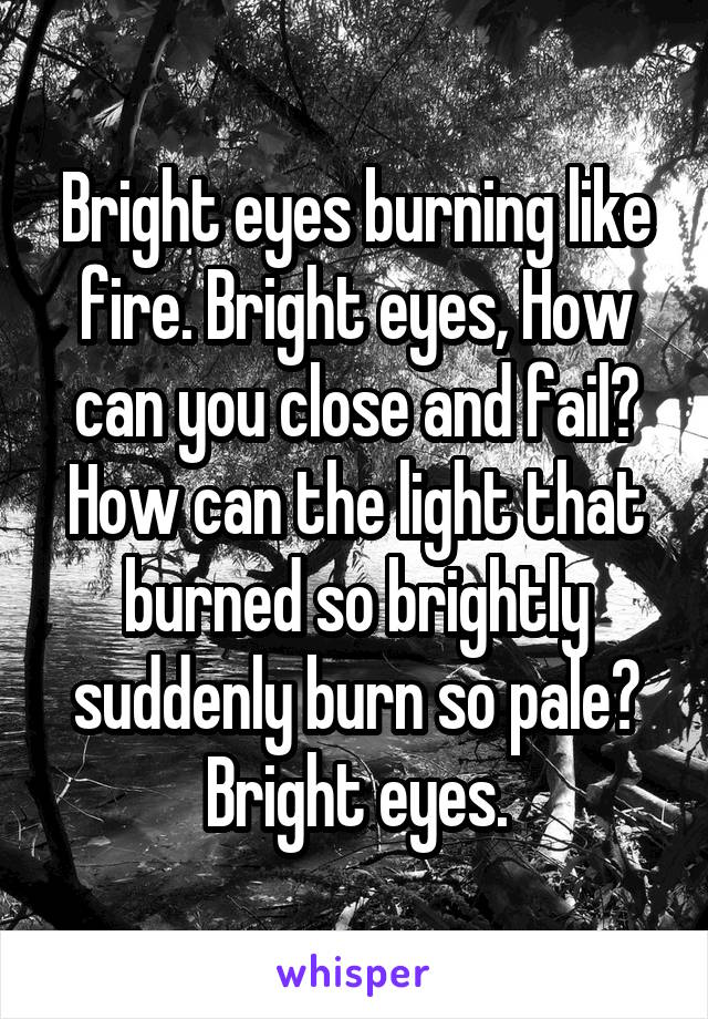 Bright eyes burning like fire. Bright eyes, How can you close and fail? How can the light that burned so brightly suddenly burn so pale? Bright eyes.