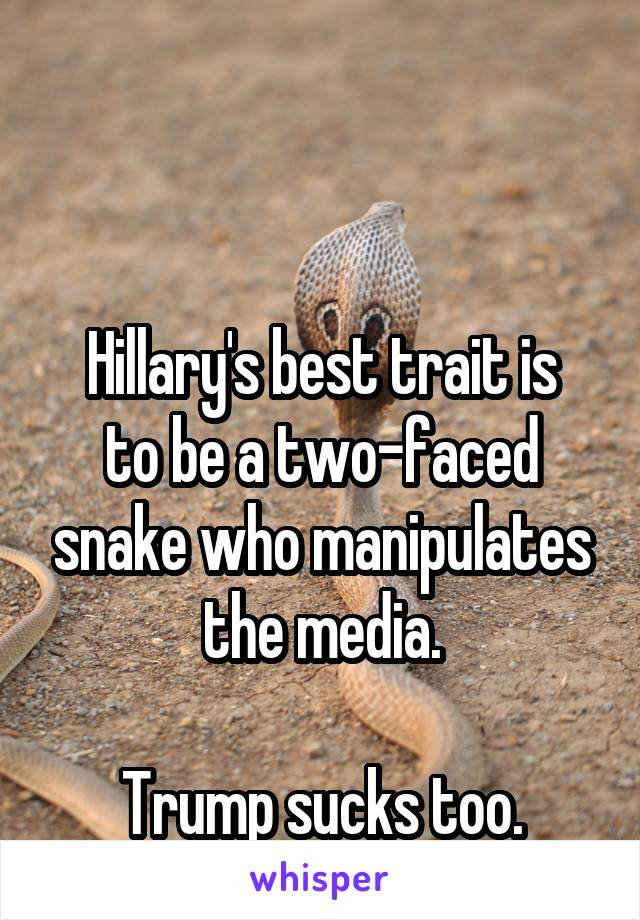 Hillary's best trait is to be a two-faced snake who manipulates the media.  Trump sucks too.
