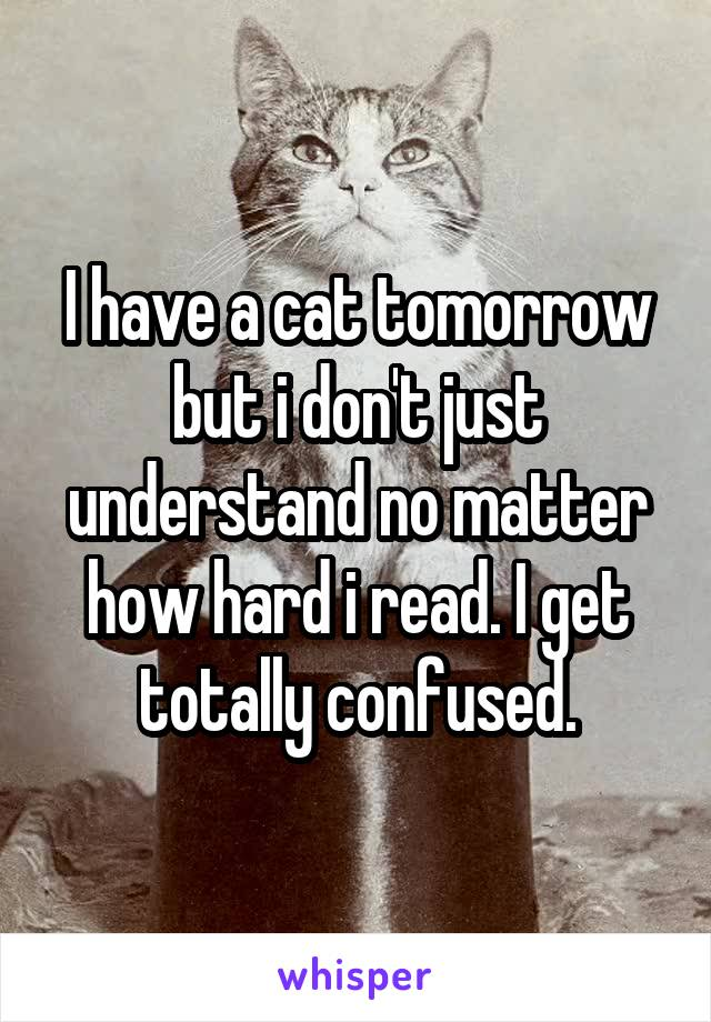I have a cat tomorrow but i don't just understand no matter how hard i read. I get totally confused.