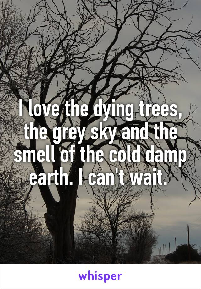 I love the dying trees, the grey sky and the smell of the cold damp earth. I can't wait.
