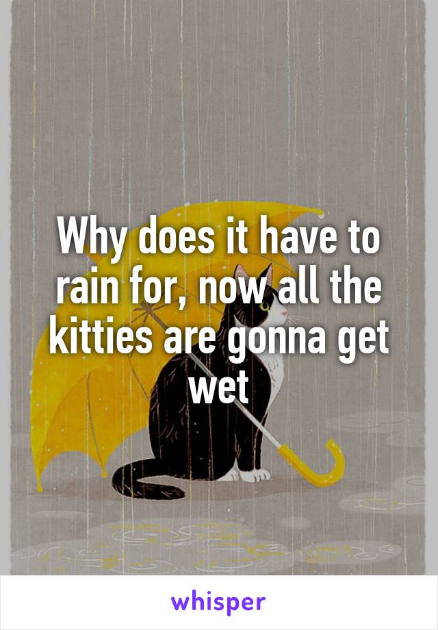 Why does it have to rain for, now all the kitties are gonna get wet