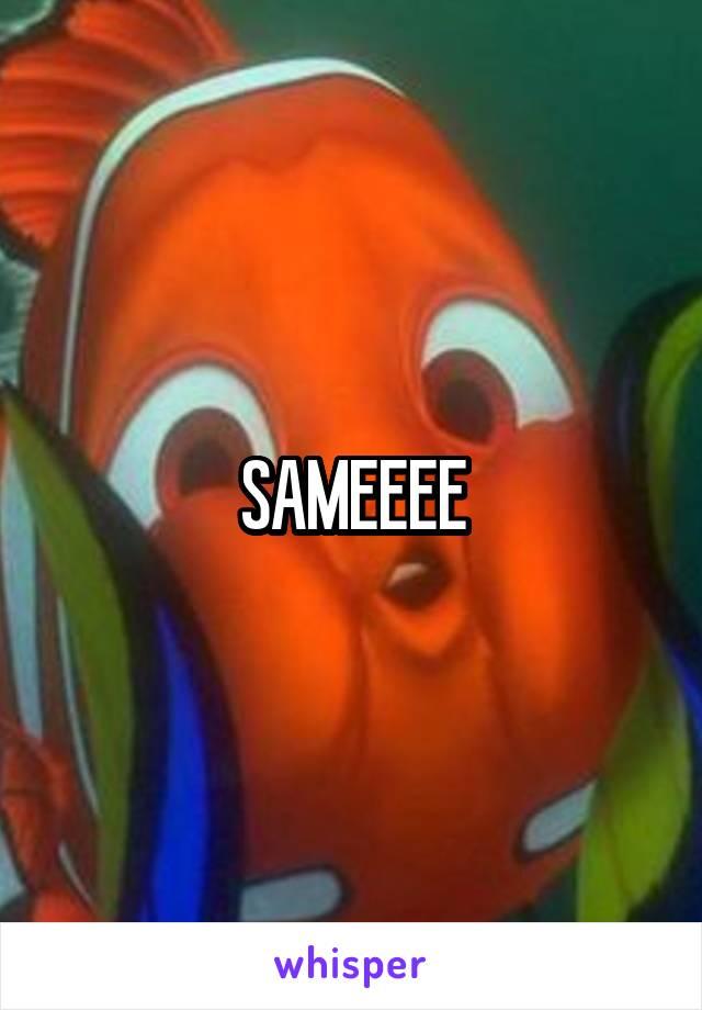 SAMEEEE
