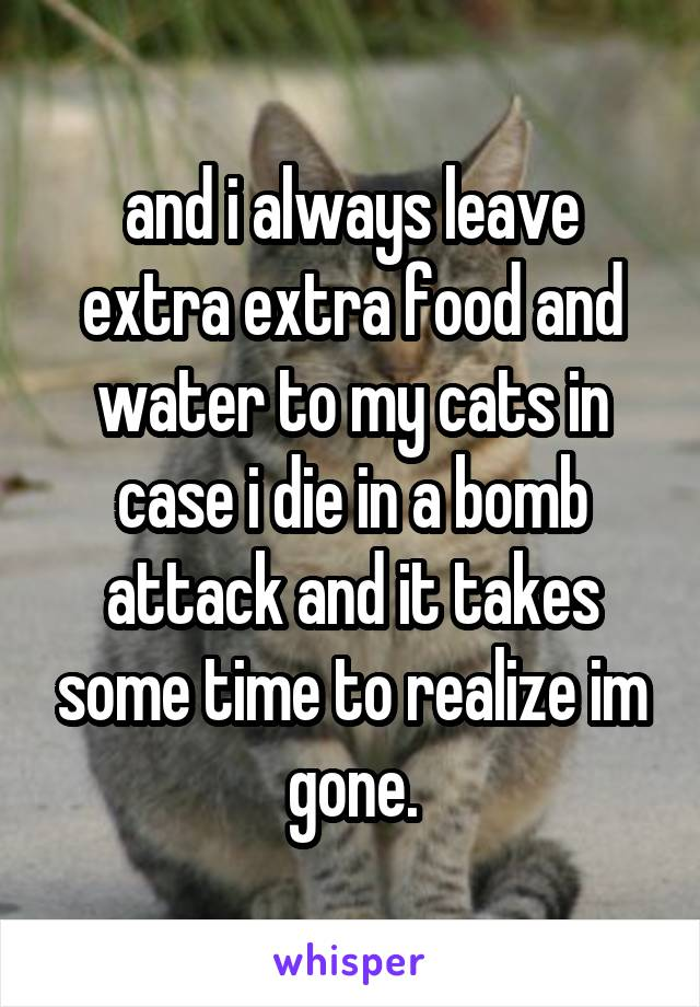 and i always leave extra extra food and water to my cats in case i die in a bomb attack and it takes some time to realize im gone.