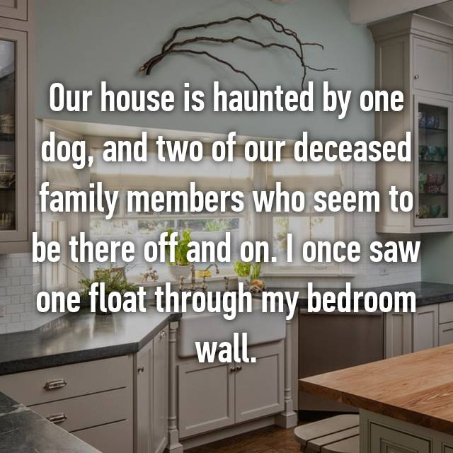 Our house is haunted by one dog, and two of our deceased family members who seem to be there off and on. I once saw one float through my bedroom wall.