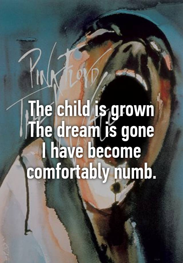 e7e531be The child is grown The dream is gone I have become comfortably numb.