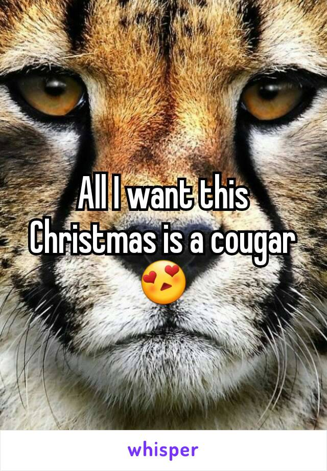 All I want this Christmas is a cougar 😍