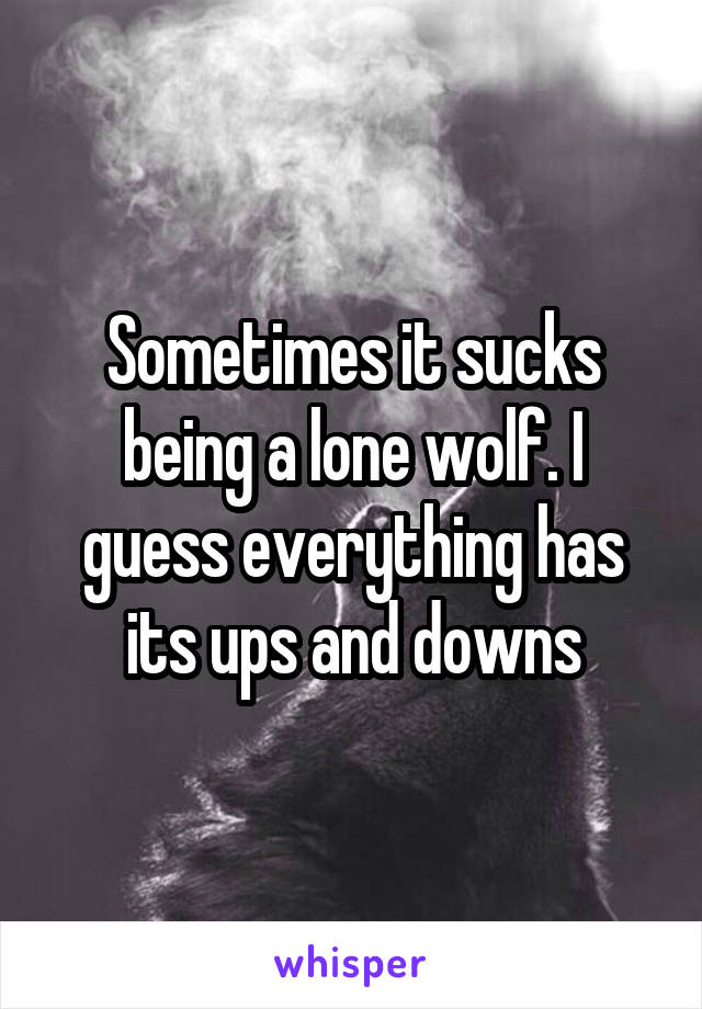 Sometimes it sucks being a lone wolf. I guess everything has its ups and downs