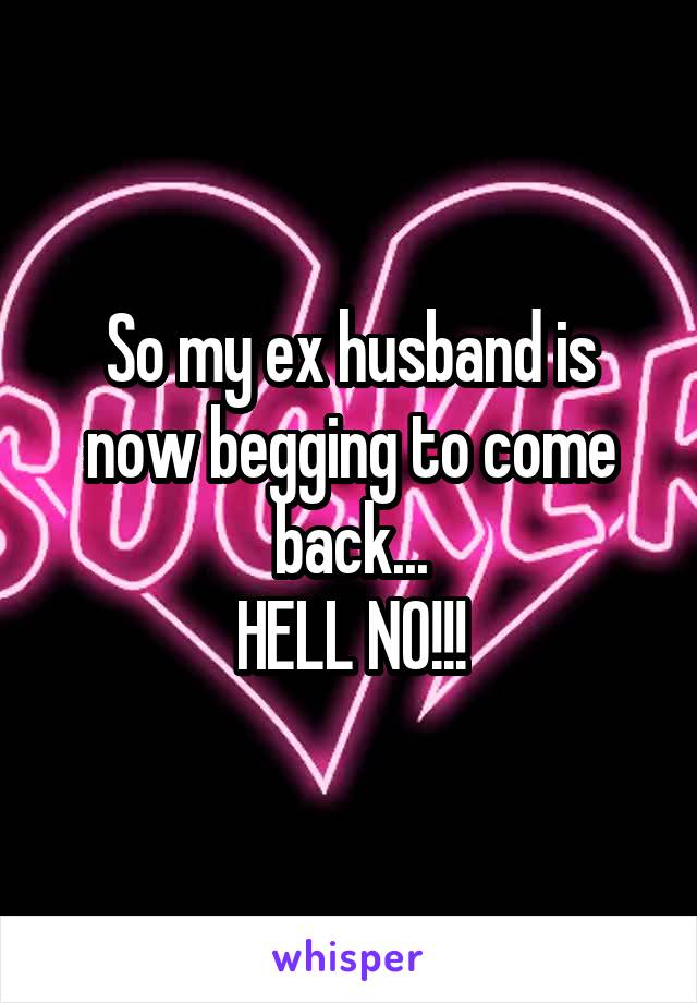 So my ex husband is now begging to come back... HELL NO!!!