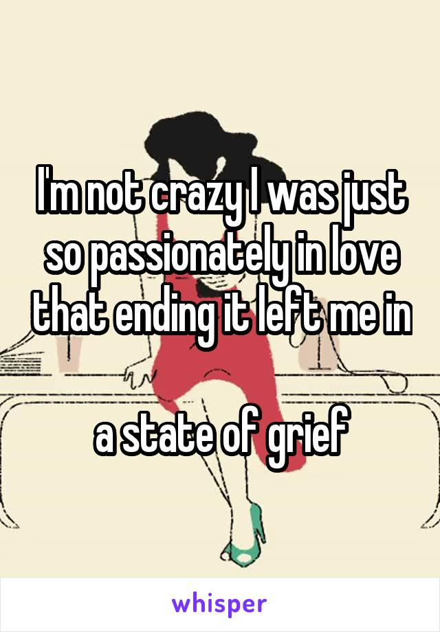 I'm not crazy I was just so passionately in love that ending it left me in  a state of grief