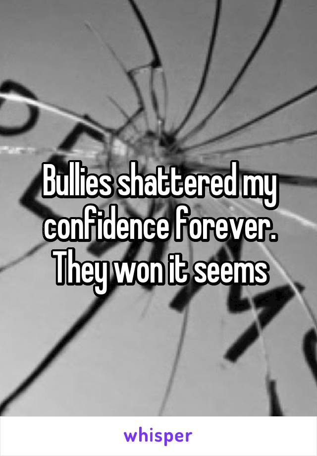 Bullies shattered my confidence forever. They won it seems