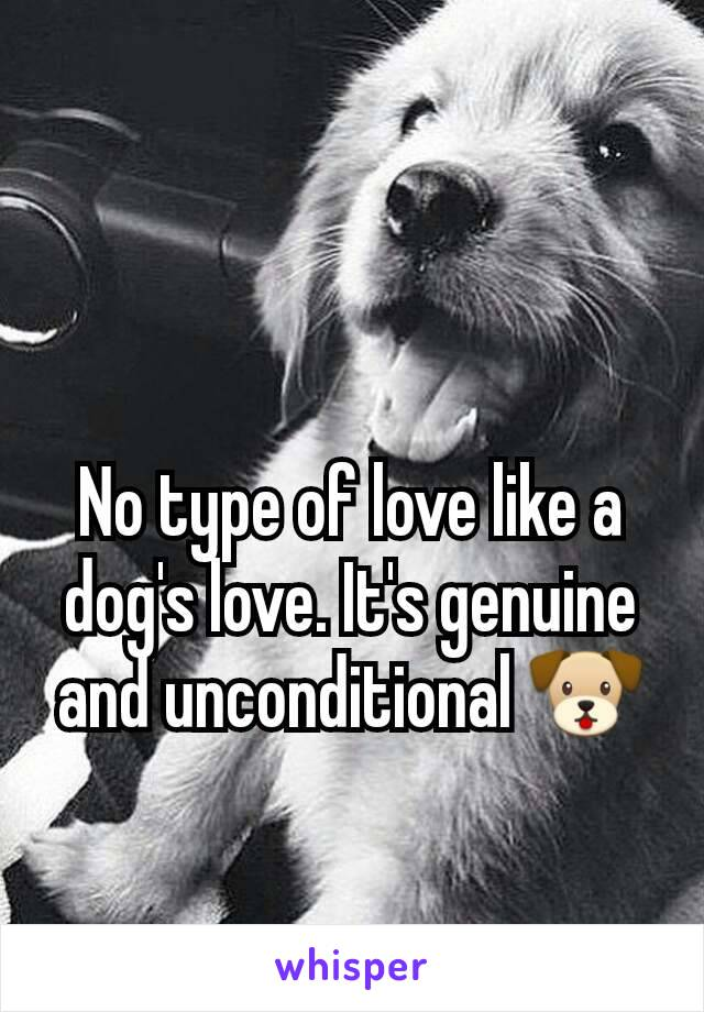 No type of love like a dog's love. It's genuine and unconditional 🐶