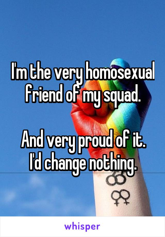 I'm the very homosexual friend of my squad.  And very proud of it. I'd change nothing.