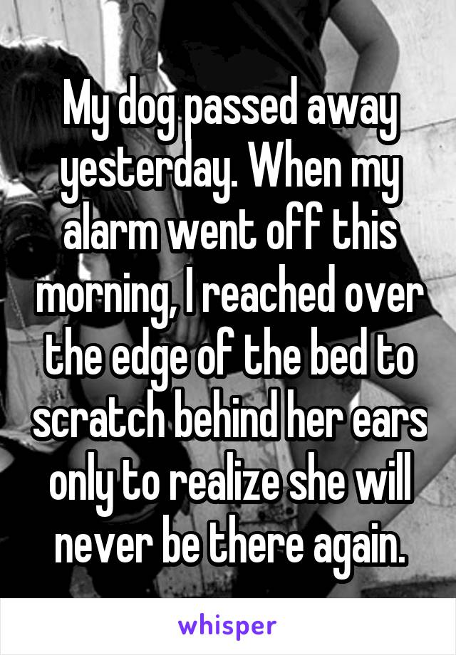 My dog passed away yesterday. When my alarm went off this morning, I reached over the edge of the bed to scratch behind her ears only to realize she will never be there again.