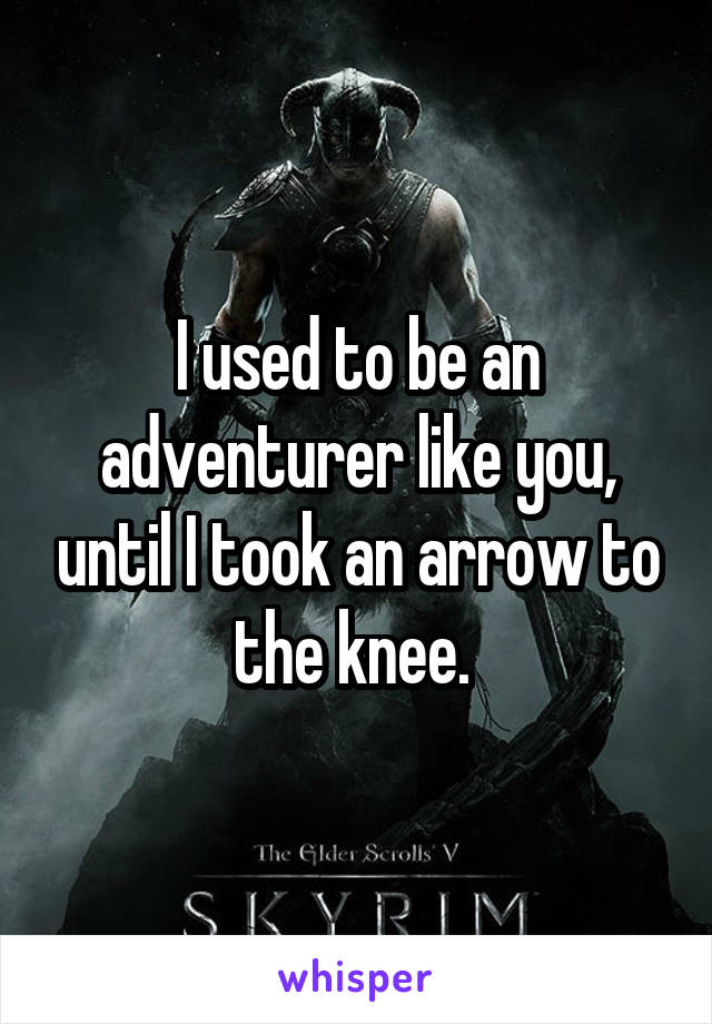 I used to be an adventurer like you, until I took an arrow to the knee.