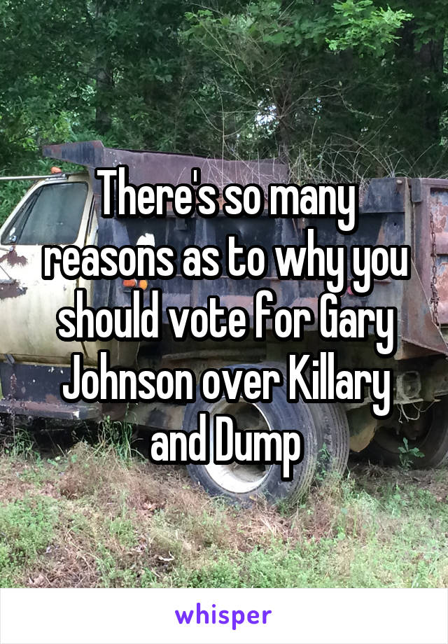There's so many reasons as to why you should vote for Gary Johnson over Killary and Dump