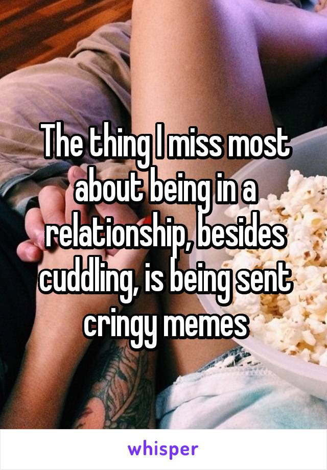 The thing I miss most about being in a relationship, besides cuddling, is being sent cringy memes