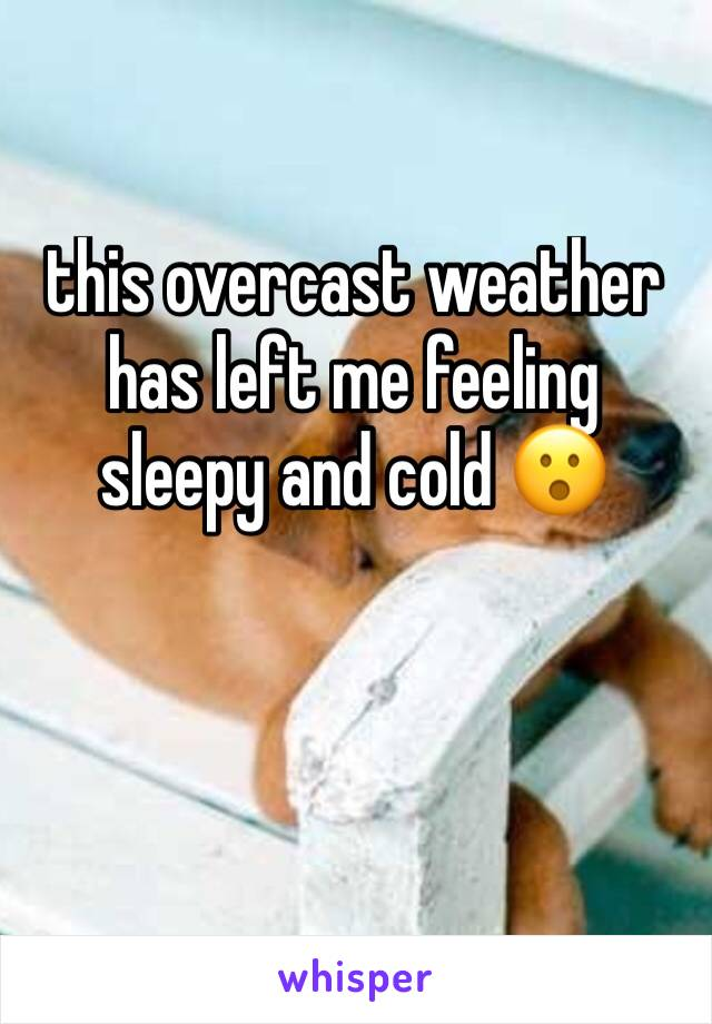 this overcast weather has left me feeling sleepy and cold 😮