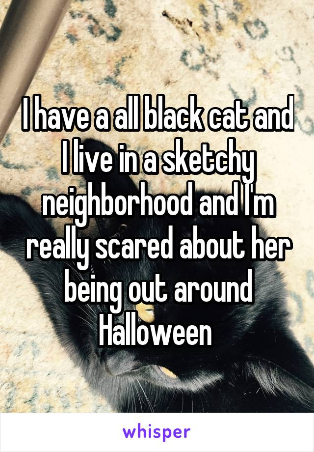 I have a all black cat and I live in a sketchy neighborhood and I'm really scared about her being out around Halloween