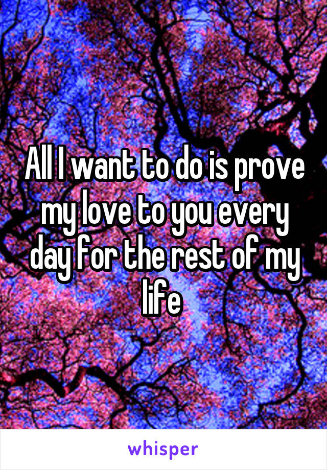 All I want to do is prove my love to you every day for the rest of my life