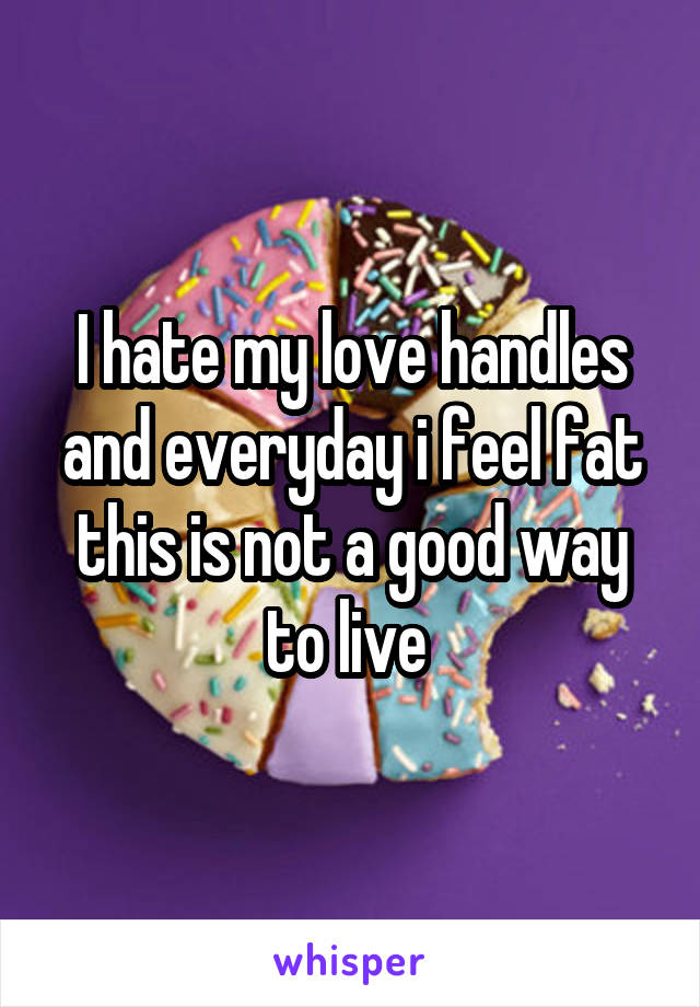 I hate my love handles and everyday i feel fat this is not a good way to live