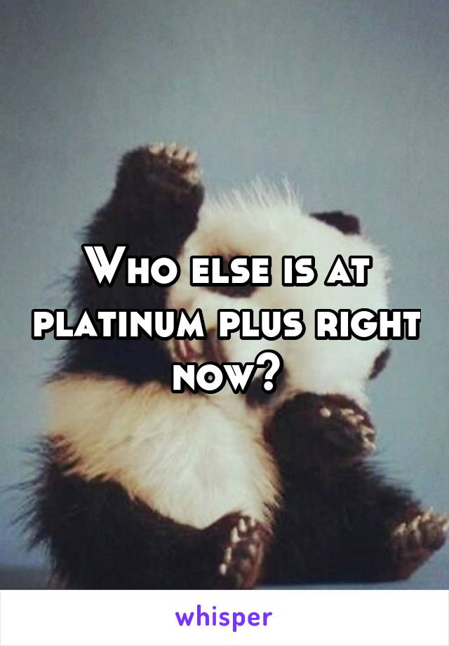 Who else is at platinum plus right now?