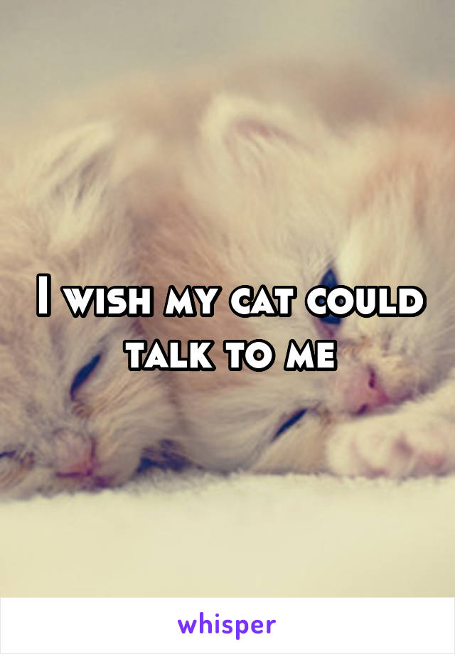 I wish my cat could talk to me