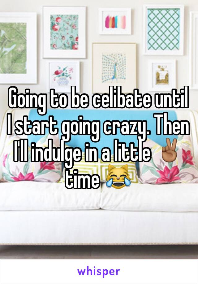 Going to be celibate until I start going crazy. Then I'll indulge in a little ✌🏾️time 😹