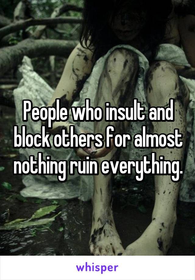 People who insult and block others for almost nothing ruin everything.