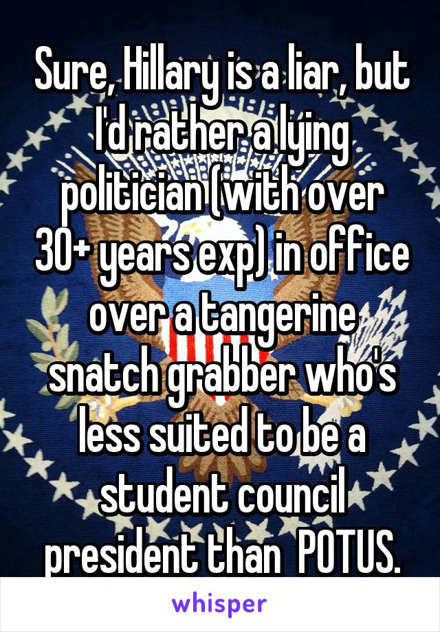 Sure, Hillary is a liar, but I'd rather a lying politician (with over 30+ years exp) in office over a tangerine snatch grabber who's less suited to be a student council president than  POTUS.