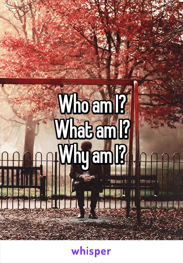 Who am I? What am I? Why am I?
