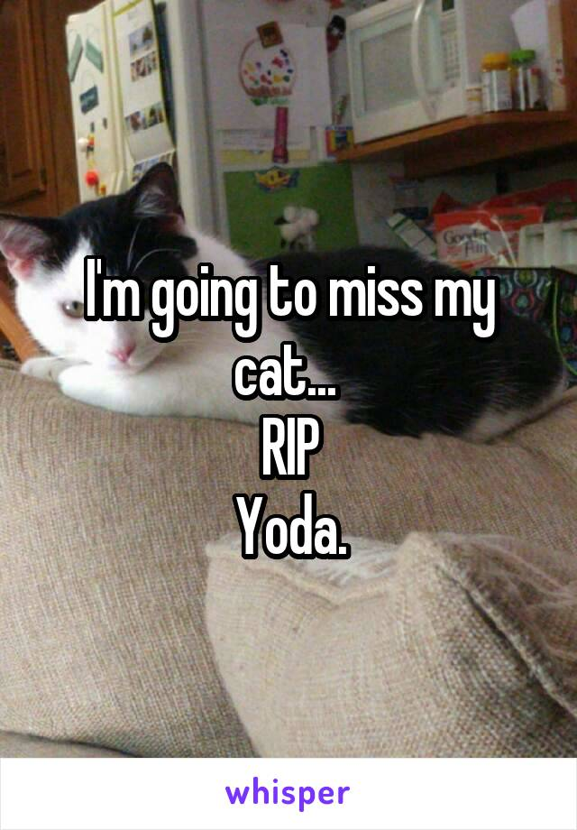 I'm going to miss my cat...  RIP Yoda.