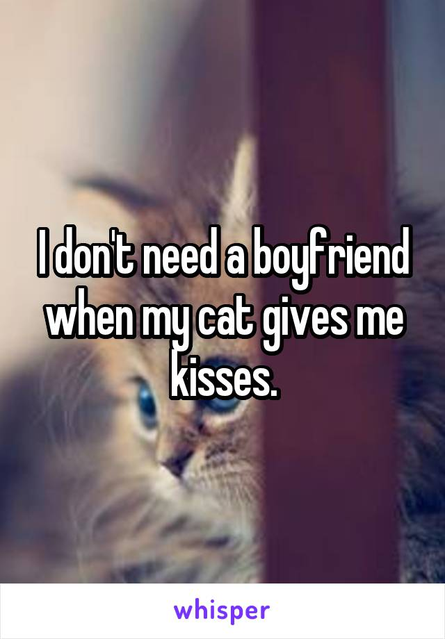 I don't need a boyfriend when my cat gives me kisses.