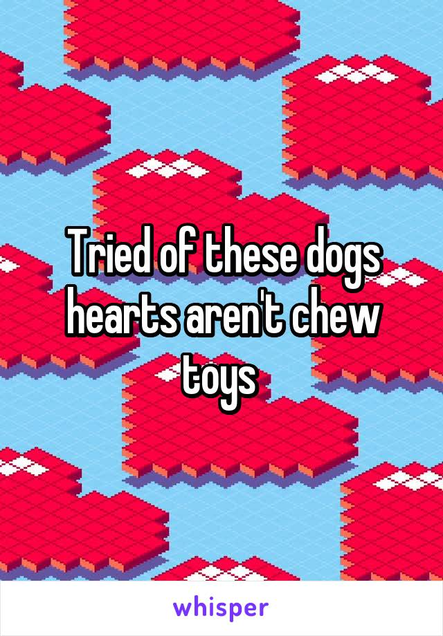 Tried of these dogs hearts aren't chew toys