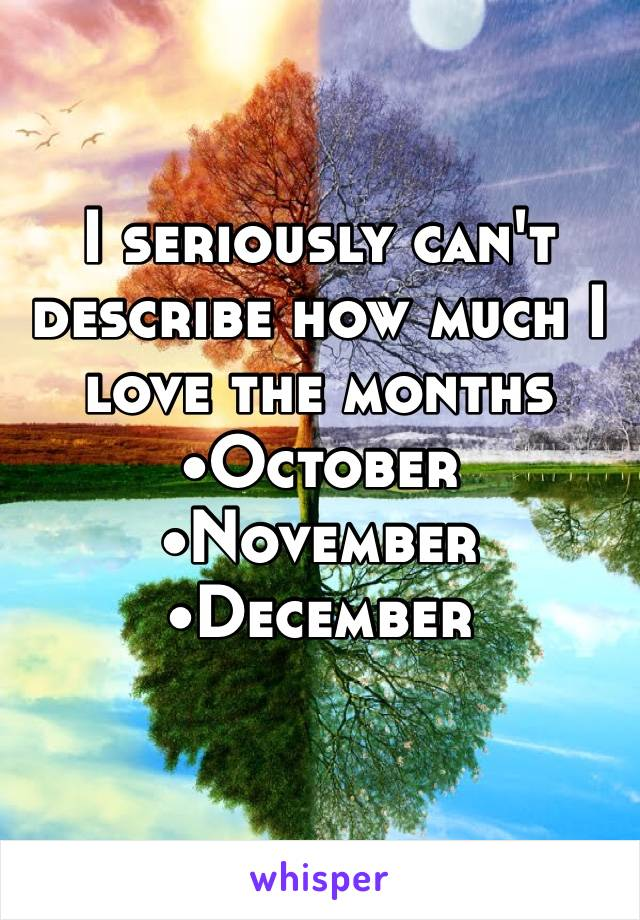 I seriously can't describe how much I love the months •October •November •December