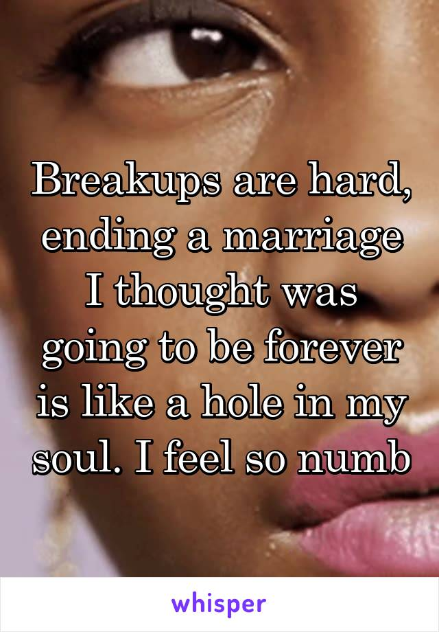Breakups are hard, ending a marriage I thought was going to be forever is like a hole in my soul. I feel so numb