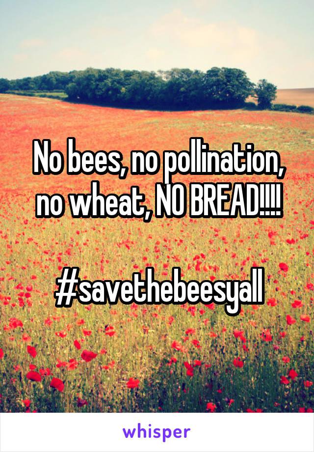No bees, no pollination, no wheat, NO BREAD!!!!  #savethebeesyall