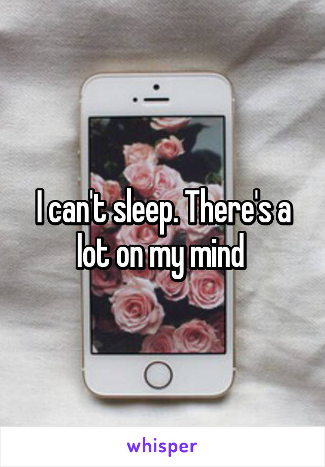 I can't sleep. There's a lot on my mind