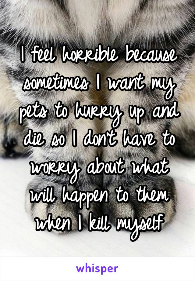 I feel horrible because sometimes I want my pets to hurry up and die so I don't have to worry about what will happen to them when I kill myself