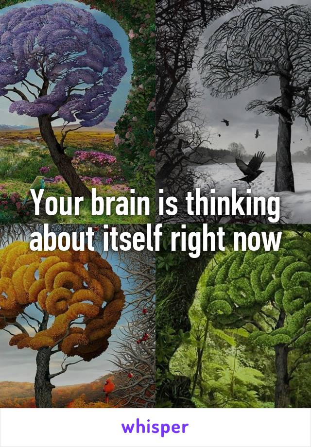 Your brain is thinking about itself right now