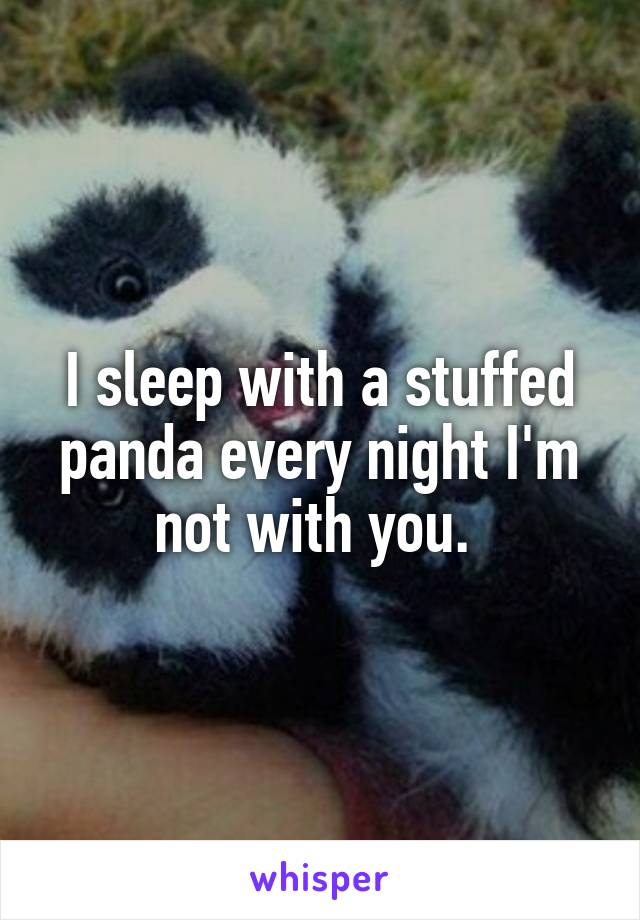 I sleep with a stuffed panda every night I'm not with you.
