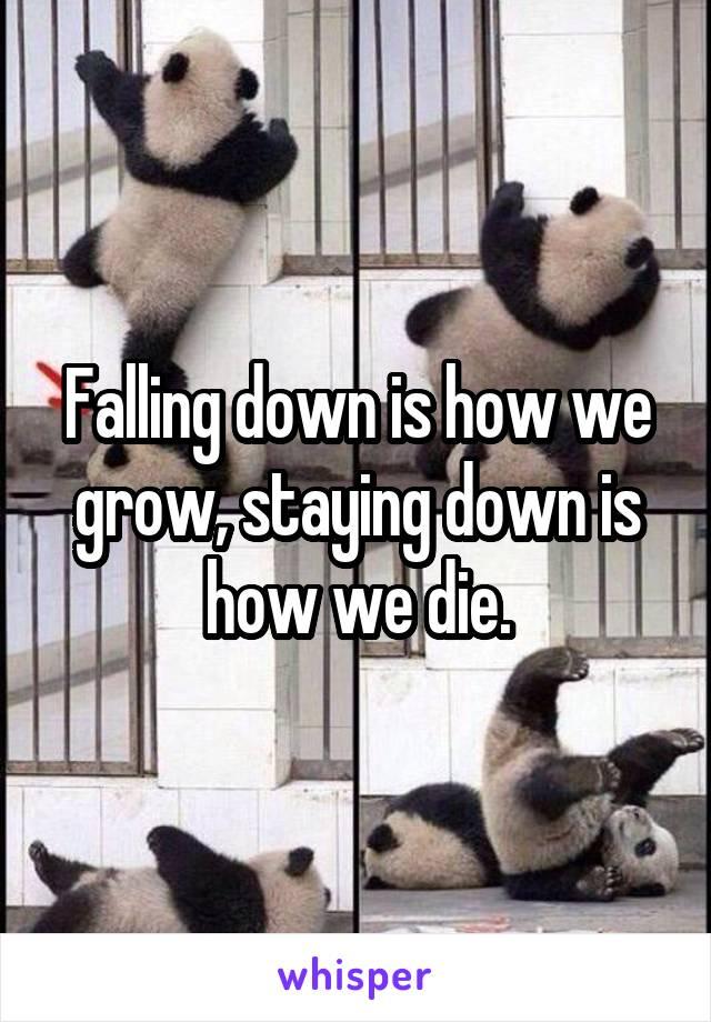 Falling down is how we grow, staying down is how we die.