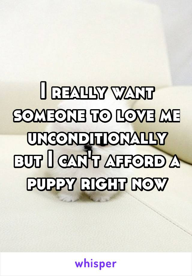 I really want someone to love me unconditionally but I can't afford a puppy right now