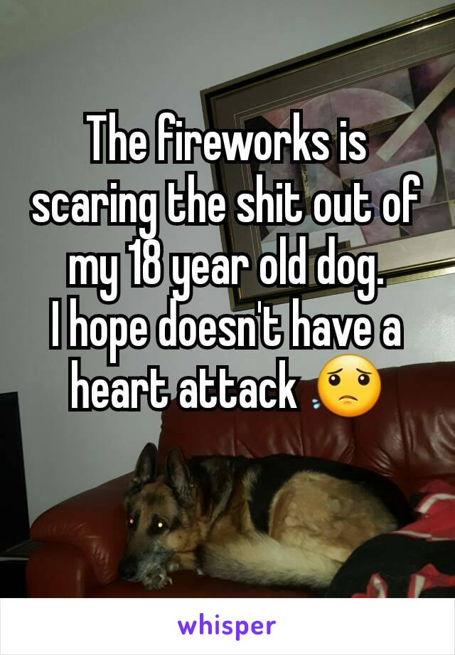The fireworks is scaring the shit out of my 18 year old dog. I hope doesn't have a heart attack 😟