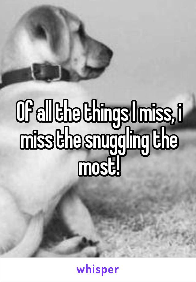 Of all the things I miss, i miss the snuggling the most!